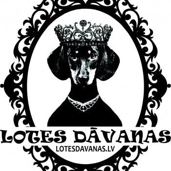LOTES DĀVANAS